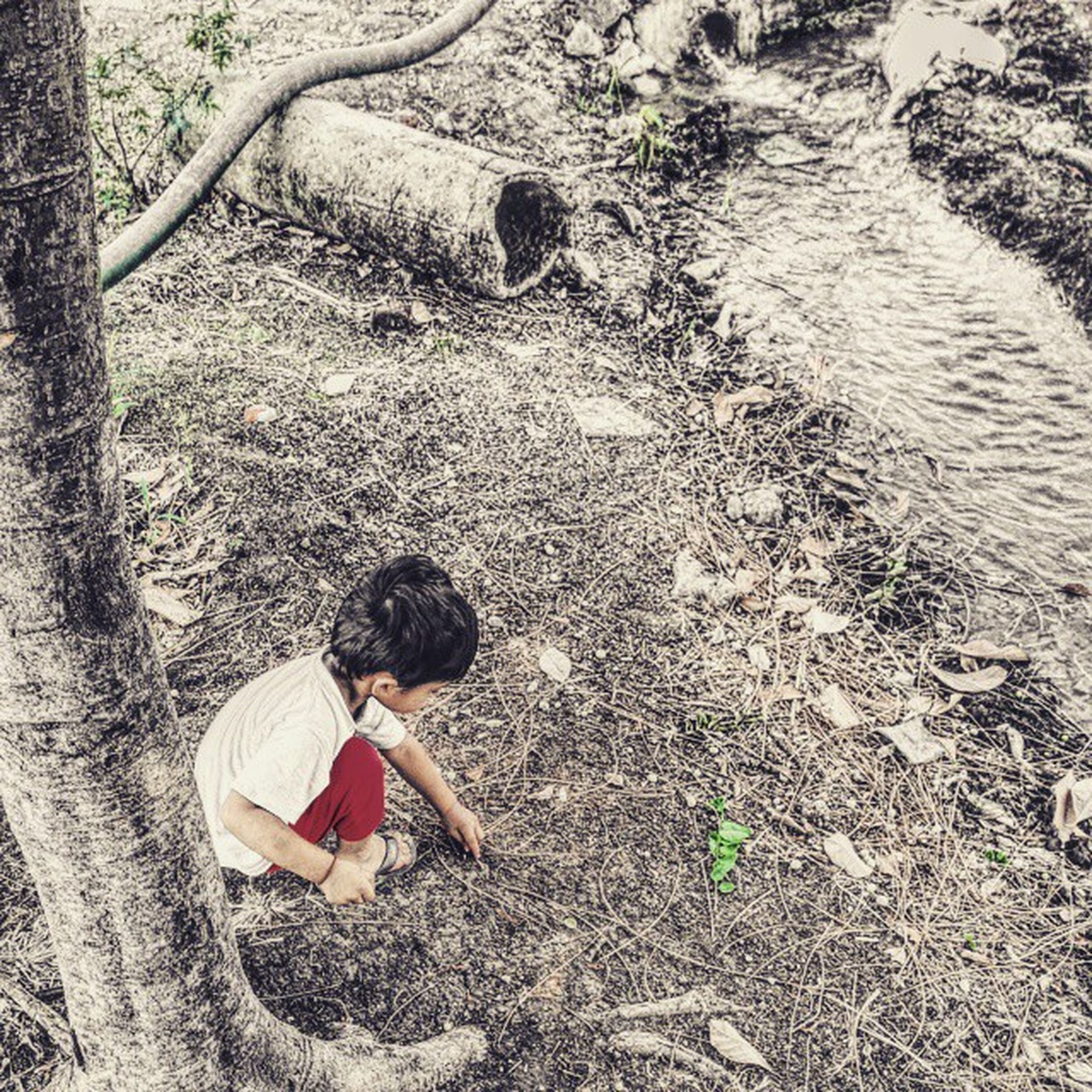 high angle view, sand, childhood, field, leisure activity, nature, day, lifestyles, sunlight, outdoors, beach, tranquility, grass, full length, tree, relaxation, rock - object, shore