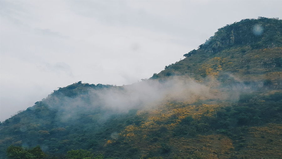 Foggy Mountain With Trees Against Sky