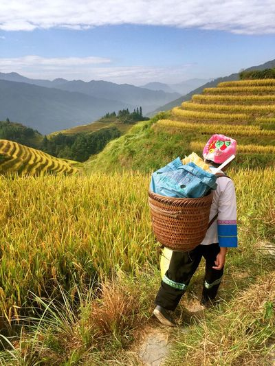 Food And Drink Agriculture Childhood Holding Sitting Rural Scene Grass Rear View Landscape Field Casual Clothing Full Length Freshness Growth Farm Day Tranquil Scene Flower Tranquility Nature