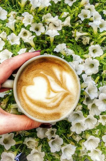 Cropped Image Of Woman Hand Holding Cappuccino By Flowers
