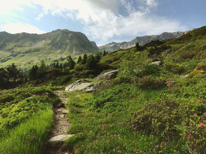 Hiking Trail Path Alps Mountain Beauty In Nature Nature Landscape Sky No People Outdoors Scenics Tranquility