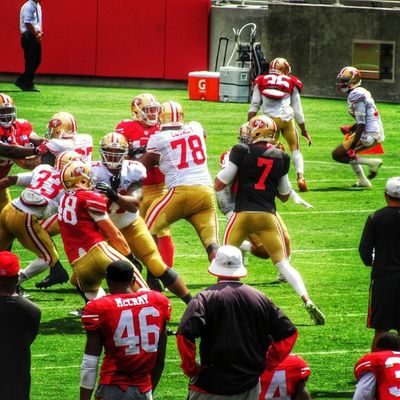 NFL Niners Ninerfan Ninerempire 49ers 49ersfan 49erempire 49erfaithful 49erfans goldblooded goniners 9ers 9ersfan the_niner_empire nfltrainingcamp 49erstrainingcamp sf49ers sanfrancisco49ers colinkaepernick kaepernick ck7 7