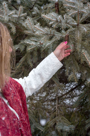 Close-up of hand on frozen christmas tree