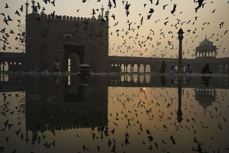 Morning glory at Jama Mosque Birds Jama Masjid Motion Old Delhi Reflection Sunrise My Year My View