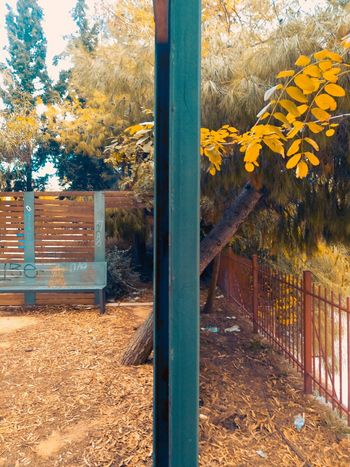 Yellow Outdoors No People Nature Green Mobile Photography XperiaM5 Leaf Greece Our Best Pics Taking Photos Athens, Greece Autumn EyeEm Best Shots From My Point Of View Sony Mobile EyeEm Masterclass Eye4photography  Orange Bench Kallithea Tree Athens Fences Getting Inspired