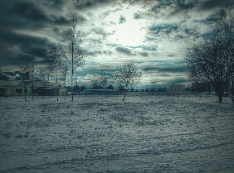 Fields Snow ❄ Evening Sun Beautuful Sunset Sun On Clouds Trees Distant View Some Building
