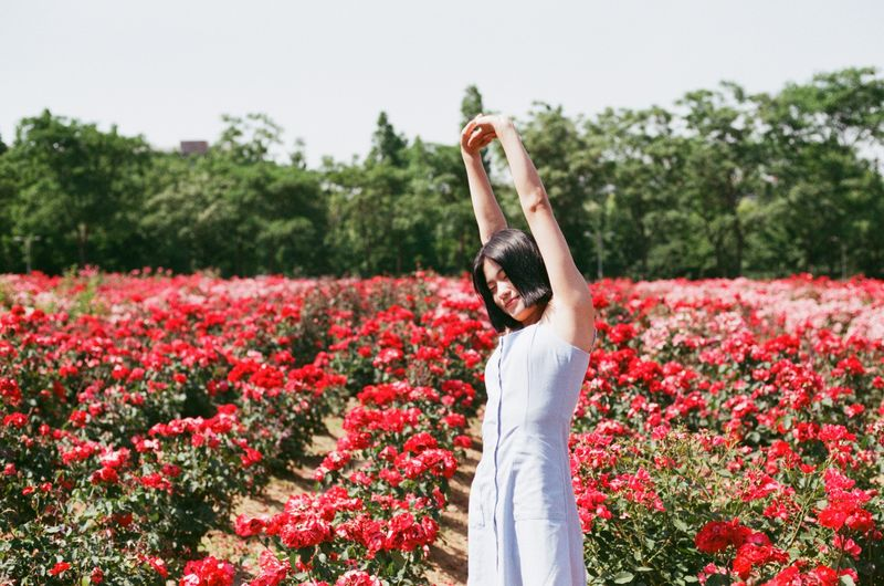 Plant One Person Flowering Plant Flower Adult Freshness Nature Women Day Field Beauty In Nature Standing Human Limb Human Body Part Body Part Human Arm Limb Red Outdoors Growth