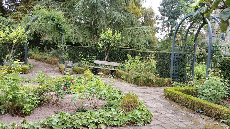 Garden Outdoors Green Color Beauty In Nature Park Tranquility Nature Tree Flower Tranquil Scene Beauty In Nature Naturelover Garden Decor Garden Architecture Environment Protection Naturephotography Architecture Green Color Flowers,Plants & Garden My Escape  Beautiful Garden