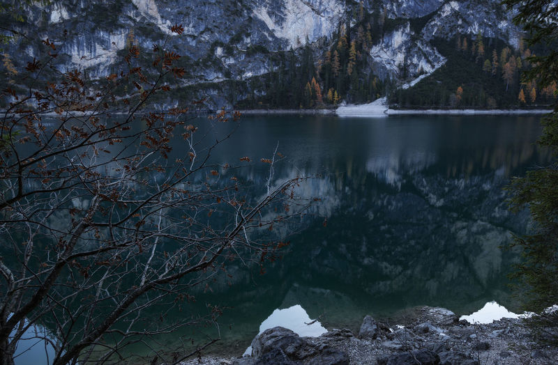 Scenic view of lake in forest at lago di braies, dolomites mountains