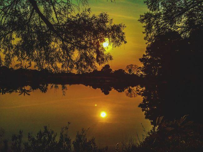 Sun as domino, this afternoon. Sun EyeEm Best Edits Perfect Popular Photos