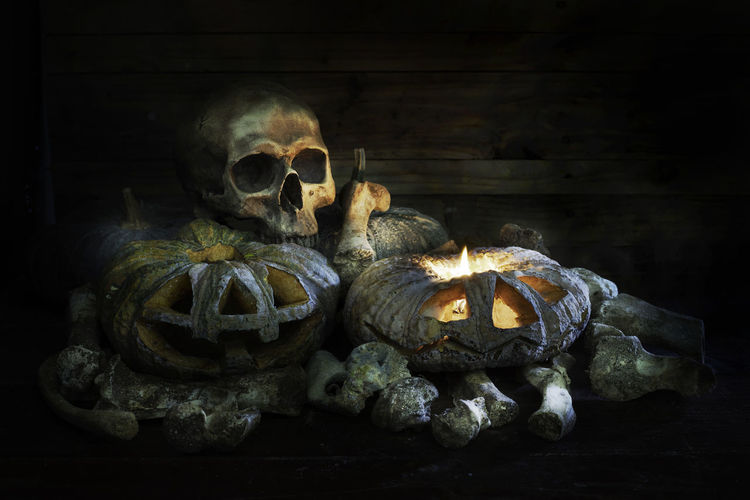Skull bones with and pumpkins in the dark night on old wooden plate and wooden background / Still life style Lighting Candle Candlestick Evil Life Nature Skeleton Bone  Died Fear Halloween History Horror Human Representation Human Skeleton Human Skull Indoors  Pumpkin Representation Scary Skeleton Skull Spooky Spooky Photo Still Life The Past