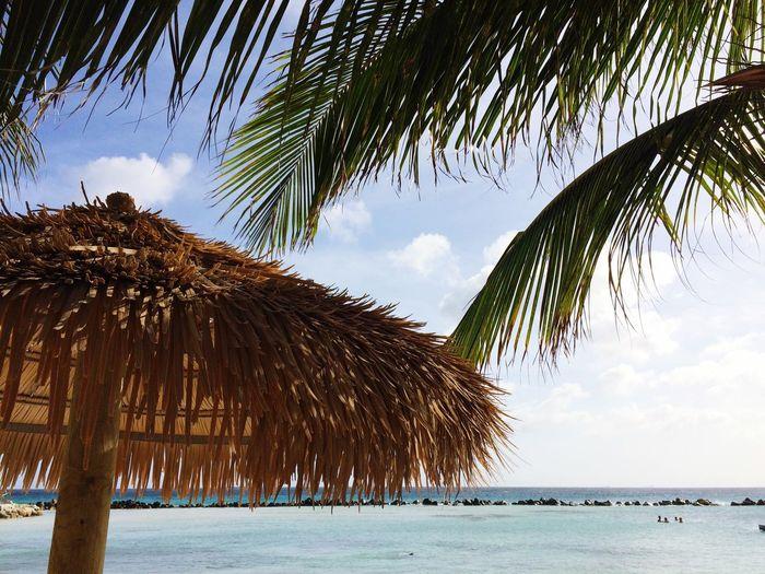 Photo taken in Babijn, Aruba