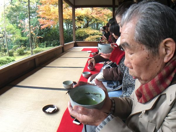 Traditionally tea and temple in Kyoto. Table Real People Window Tea - Hot Drink