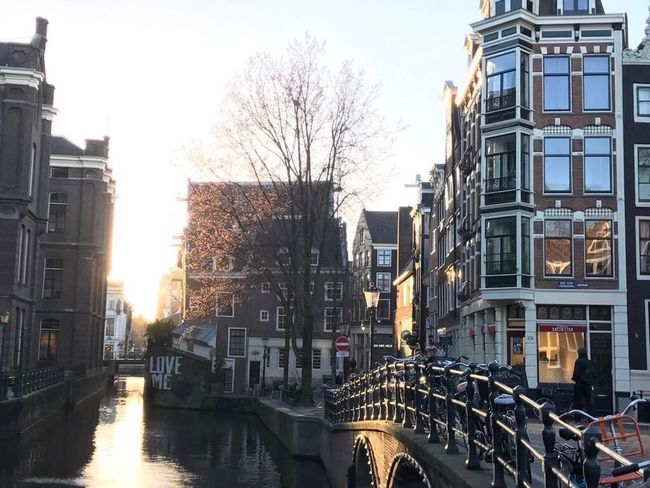Built Structure Building Exterior Architecture City Bare Tree Canal Tree Transportation Outdoors Water Bridge - Man Made Structure Sky Day Sunset Amsterdam Missyou LoveMe