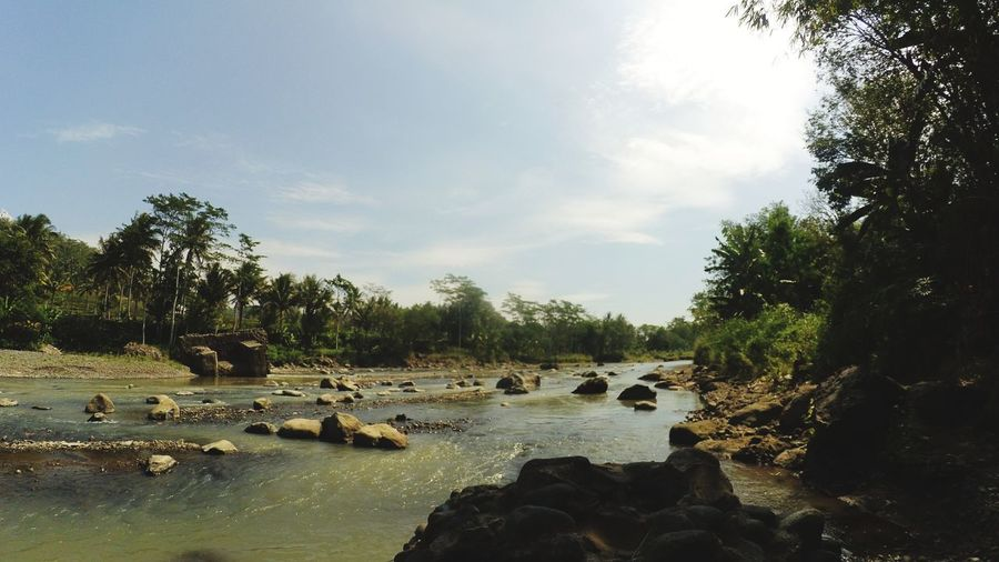 river and rock