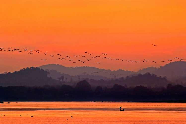 Flock Of Birds Flying Above Lake Against Sky