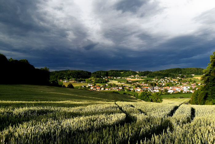 Mood over Gnas Landscape Cloud - Sky Agriculture Nature Field Tranquility Outdoors
