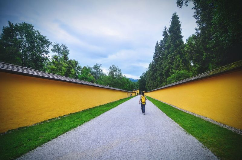 The strange pull towards the vanishing point Hypnotic Walking Away Person Walking Yellow Wall Compound Wall Leading Lines vanishing point Plant Tree One Person Real People Sky Architecture Lifestyles Nature Green Color The Way Forward Direction Walking Outdoors Diminishing Perspective
