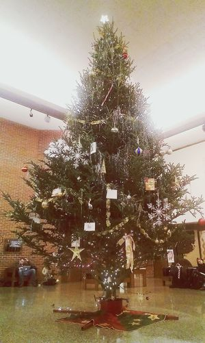 Giant Christmas tree in the art building! Christmas Tree Tinsel  Sparkles ✨ Giant Tree