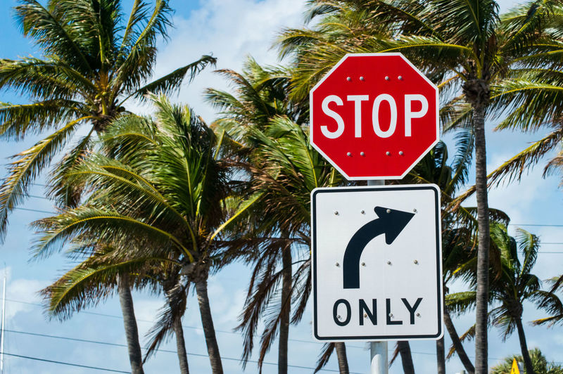 Close-up of road sign by palm trees against sky