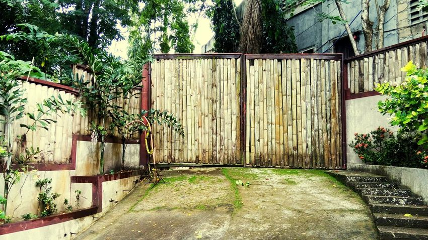 Gate Outdoors Day Plant Tree No People Architecture Nature Sky EyeEmNewHere
