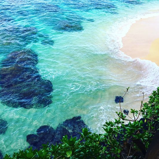 Crystal clear water, Kauai Island, Hawaii The Week on EyeEm Popular Photos Photo Tranquility EyeEm Selects EyeEm Best Shots Photooftheday Vacations Kauai Water Sea Beauty In Nature Rock High Angle View Nature Rock - Object Turquoise Colored Scenics - Nature No People Wave Beach