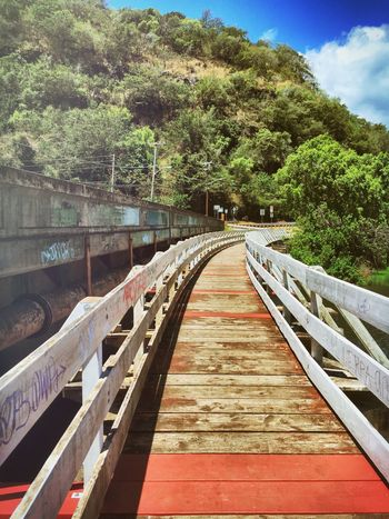 Bridges Takemetothebeach Theroadlesstraveled Luckywelivehawaii Waimea Bay This Is My Playground Outdoors Walk This Way Nature