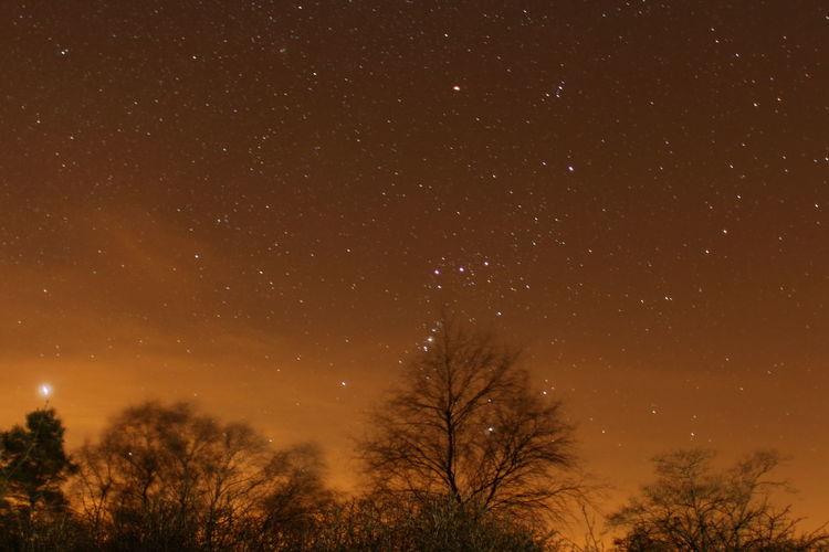 Astronomy Bare