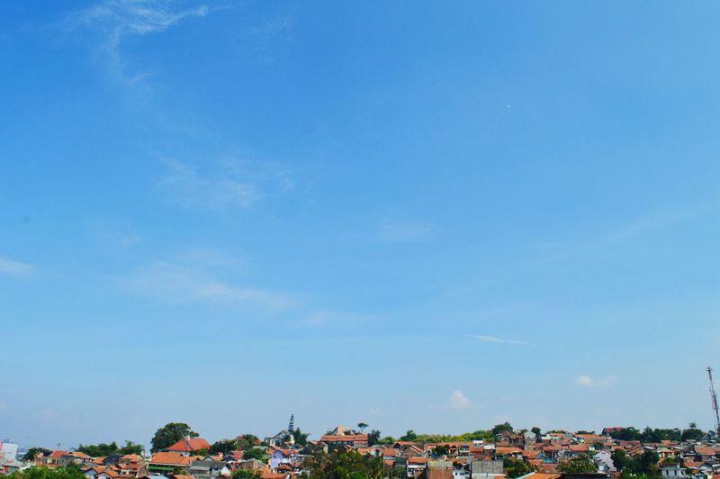 Sky Skyporn Sunnydays