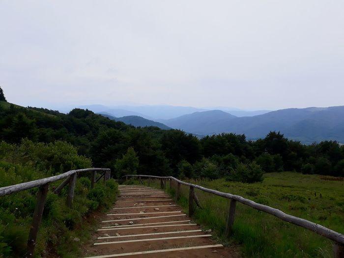 Tarnica Mountain Mountain View Bieszczady Mountains Field Sky Landscape