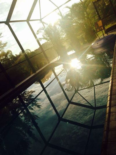 Swimming Pool Sunrise Good Morning Swimming Wheel Palm Trees In The Morning First Sun My favorite Place Reflections Réflexion Pool Cache