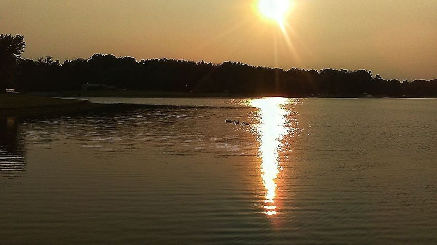 Reflection Water Lake Sun Sunset Nature Landscape Scenics Beauty In Nature Sky No People Tranquility Outdoors Moon Autumn In Indiana EyeEmNewHere Countryside Glamour Extraordinary Nature Beauty In Nature Ducks In Water Tranquility Indiana Harvest Tree Flamingo Astronomy