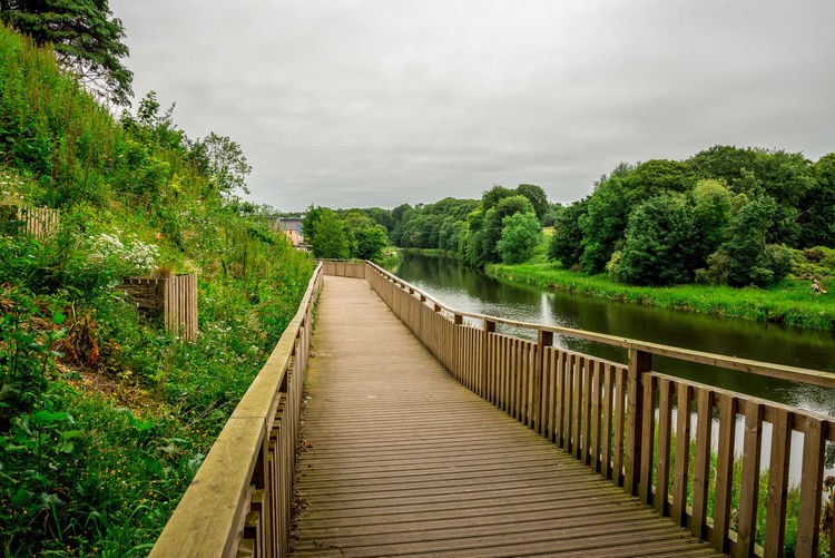 Pedestrian wooden walkway along river Don in Seaton park, Aberdeen city, Scotland Aberdeen Banks Don River Great Britain Green Morning Nature North East Scotland Seaton Park Tree United Kingdom Cloud - Sky Europe Granite City Outdoor Outside Pathway Pedestrian Plank Stream Summer Walking Water Wooden