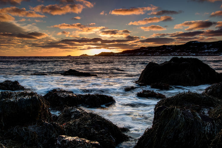 Rocks with seaweeds in sea against sky during sunset