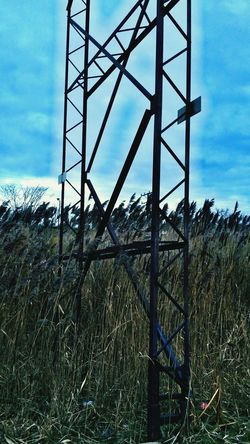 Powerlines Towers Metal Wild Reeds  Water Reeds Nature Vs City Landscape Contrasts Landscapes Things I Saw Today HDR