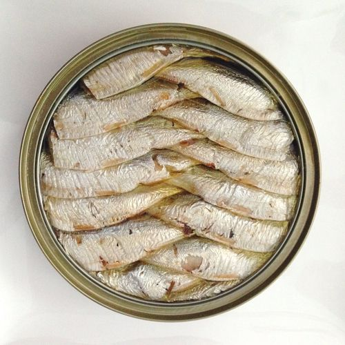 Sardinas Food And Drink Food Indoors  No People Directly Above Close-up White Background Ready-to-eat Freshness Day Sardines Food Stories