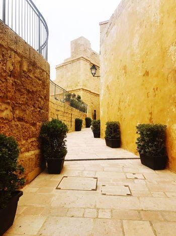 Exploring the citadel in Gozo! Citadel Cittadella Victoria Gozo 🇲🇹