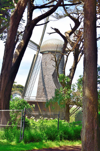Dutch Windmill @ Golden Gate Park 1 San Francisco CA🇺🇸 Built 1903 Western Edge Golden Gate Park North Windmill Wind Power 1st Of 2 Windmills 95 Ft. High 102 Ft. Sail Length Pumped 30,0000 Gallons Per Hour Pump Ground Water For The Parks Irrigation 1913 Replaced By Electric Pumps Fell Into Disrepair By 1950's In State Of Ruins Restoration Began 2000 Completed 2012 San Francisco Designated Landmark No.147 Landscape_Collection Landscape_photography Energy Alternative Engineering Marvel