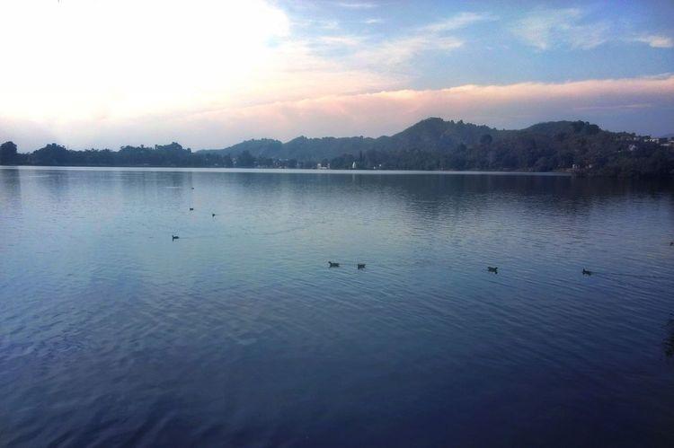 Mansar Lake, Water Lake Reflection Sunset Nature Beauty In Nature Sky Tranquility No People Scenics Blue Swimming Tranquil Scene Outdoors Bird Landscape Animal Themes Day Mountain Motog4plus JammuandKashmir Mobilephotography EyeEmNewHere Jammu