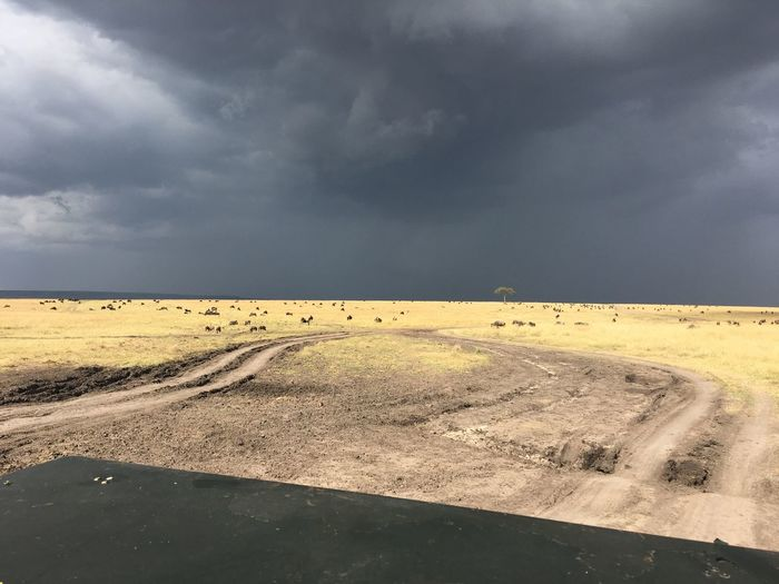 Kenya Land