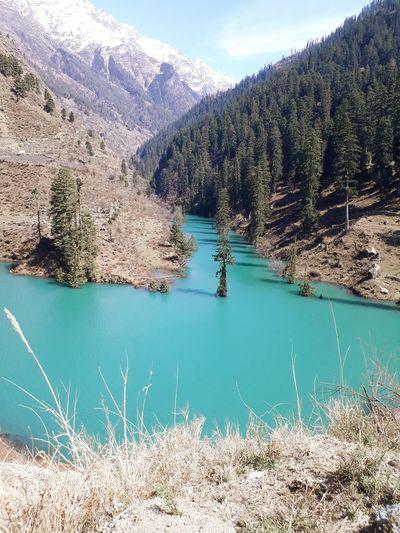Tree Water Mountain Beauty Sky Landscape Lakeside Snowcapped Mountain Lake Rocky Mountains Calm