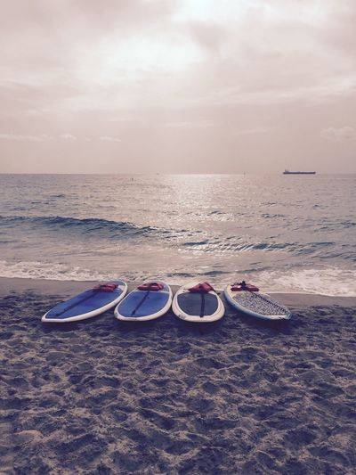 Sofla Paddleboarding Beach Sunrise Ocean