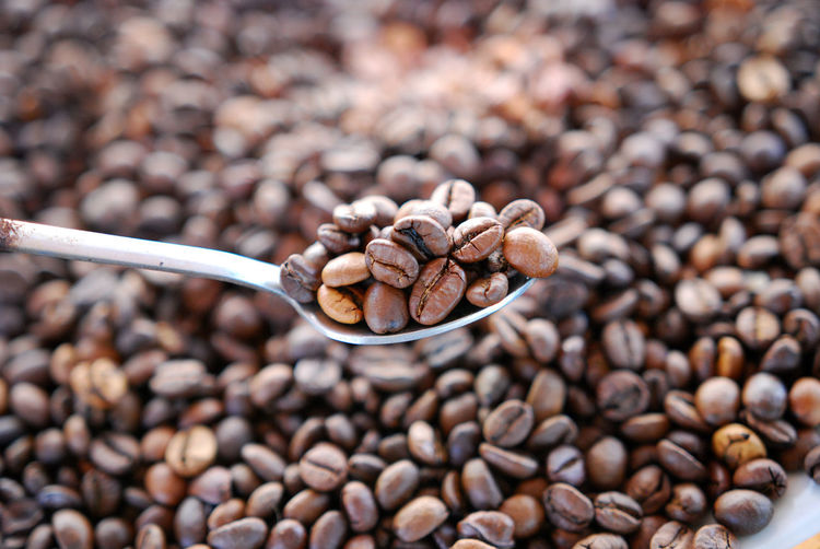 Close-up of coffee bean in spoon