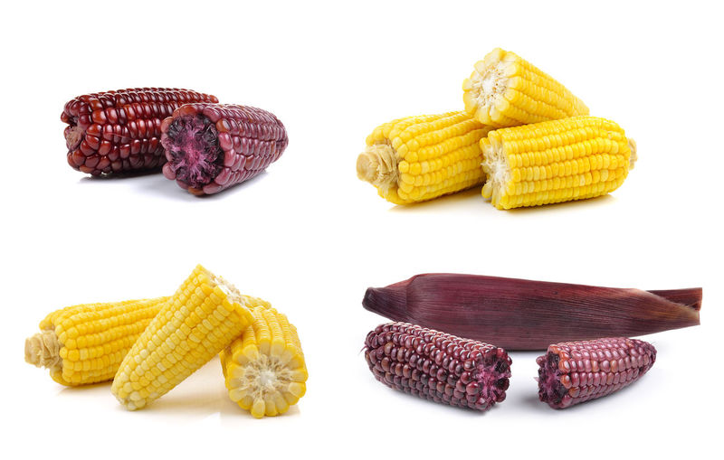 Corn White Background Food And Drink Yellow Food No People Freshness Studio Shot Still Life Cut Out Indoors  Vegetable Sweetcorn Group Of Objects Corn On The Cob Healthy Eating Close-up Wellbeing Group Nature Temptation Snack