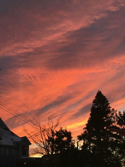 Sunset Silhouette Built Structure Tree Sky Building Exterior No People Architecture House Beauty In Nature Nature Cloud - Sky Outdoors Scenics Low Angle View