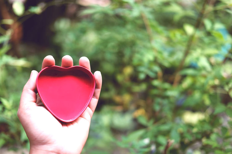 Close-up of hand holding red heart shape
