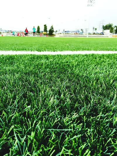 Freedom Freedom Plant Green Color Grass Field Land Nature EyeEmNewHere Sport Day Outdoors