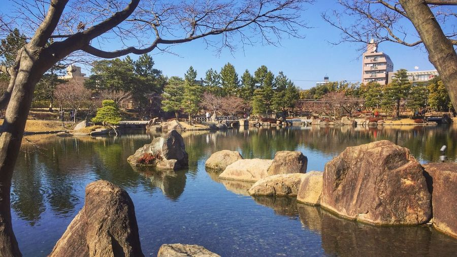 Tokugawa Garden Water Tree Plant Architecture Built Structure Nature Reflection Outdoors No People Sky Sunlight