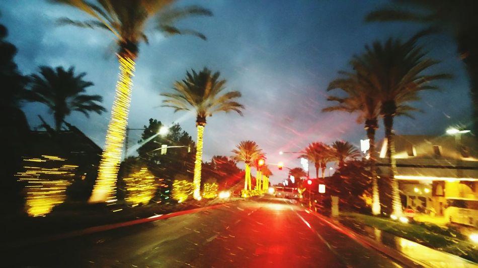 Showcase: November Sandiego Roadtrip