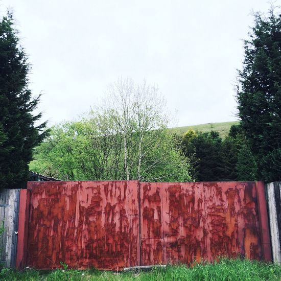 A red gate that I think has a nice look to it 😊 Red Gate Rural Farm Textures And Surfaces First Eyeem Photo